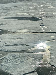 Photo of close-up fragmented ice-pack in Antarctica
