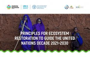 Principles for Ecosystem Restoration to Guide the United Nations Decade 2021-2030
