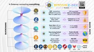 BitcoinZ-DEX Operational Explanation