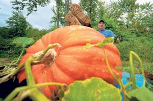 Record breaking pumpkin grown by inventor of Agria truly organic chemical-free grow-system