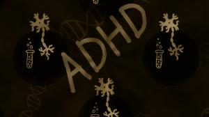 Parents are being told that their child has a 'mental disorder' but in actual fact there is no independent, valid test for ADHD nor is there any data to indicate that ADHD is due to a brain malfunction.