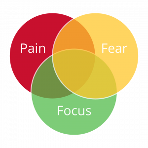 Graphic shows intersections of pain, fear, and focus