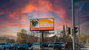 Full Billboard Promoting Debbie's Run for Mayor