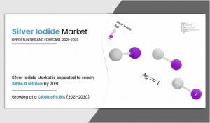 Silver Iodide Market