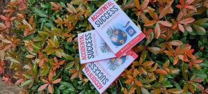 Accidental Success Book Michael Dillard