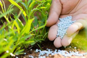 Chitin Fertilizer Market