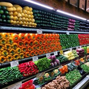 Europe Organic Food and Beverages Market