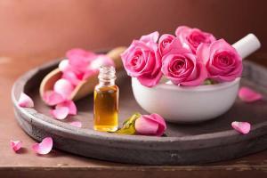 Rose Oil Market
