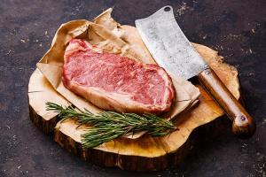 Food Processing Blades Market