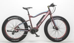 Mid Drive electric fat bike
