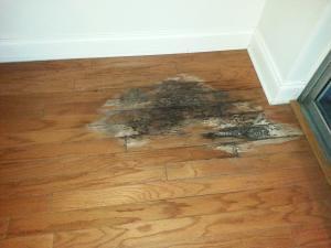 water damage on hard wood floors