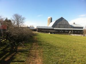 glencolton-farms-dairy-michael-schmidt