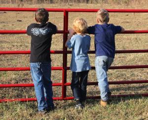 children-visit-Amish-farm