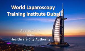 World Laparoscopy Training Institute at Dubai Healthcare City