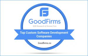 Top Custom Software Development Companies