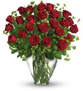 Long Stem Red Roses in a Vase