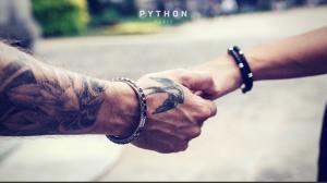 natural python and black python bracelets