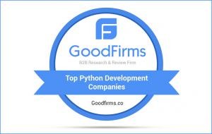 Top Python Development Companies