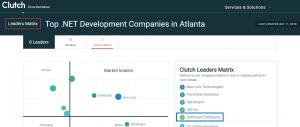 Top Dot Net Development Company Atlanta