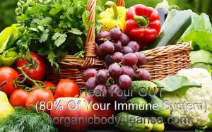 Heal Your Gut 80% of your immune system