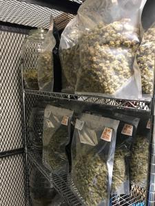 Medical and Recreational Marijuana Kaya Shack™ brand