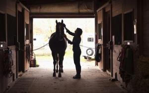 Brock Clermont Discusses Equitation