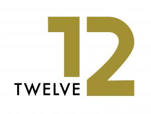 12-in-12 campaign logo