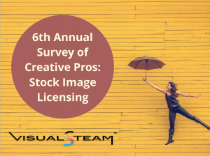 This is a picture of the cover of the 6th Annual Survey of Creative Pros: Stock Image Licensing