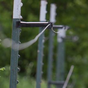KellyVaughan4 Fence