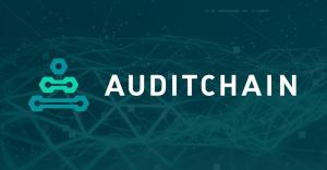 Decentralized Continuous Audit & Reporting Protocol Ecosystem