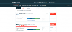 Ranked 2 in custom software development