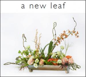 A New Leaf trend style features plants, dried botanicals and flowers
